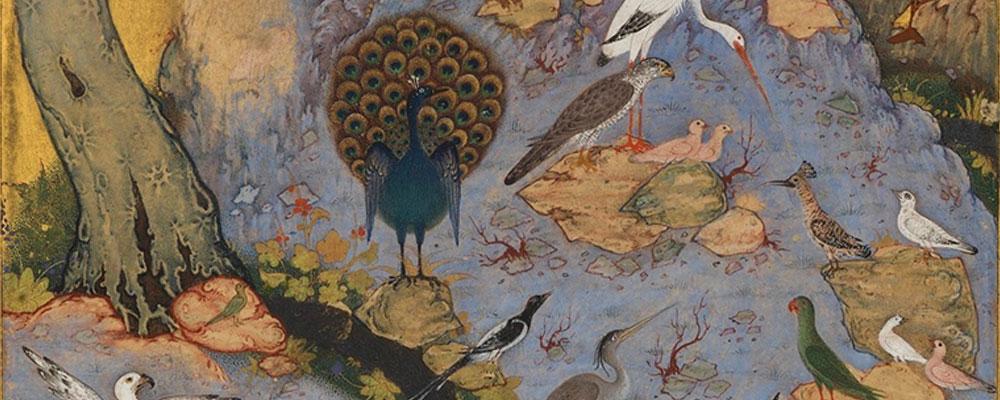 El gran viaje de los pájaros en busca de su rey