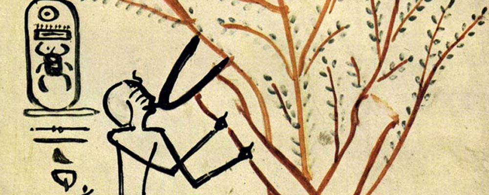 El árbol de la vida en la tradición egipcia