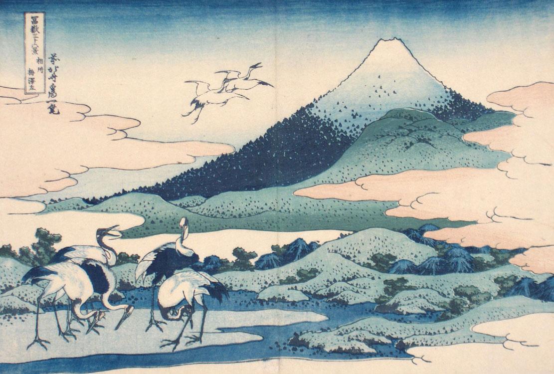 Fuji.aves