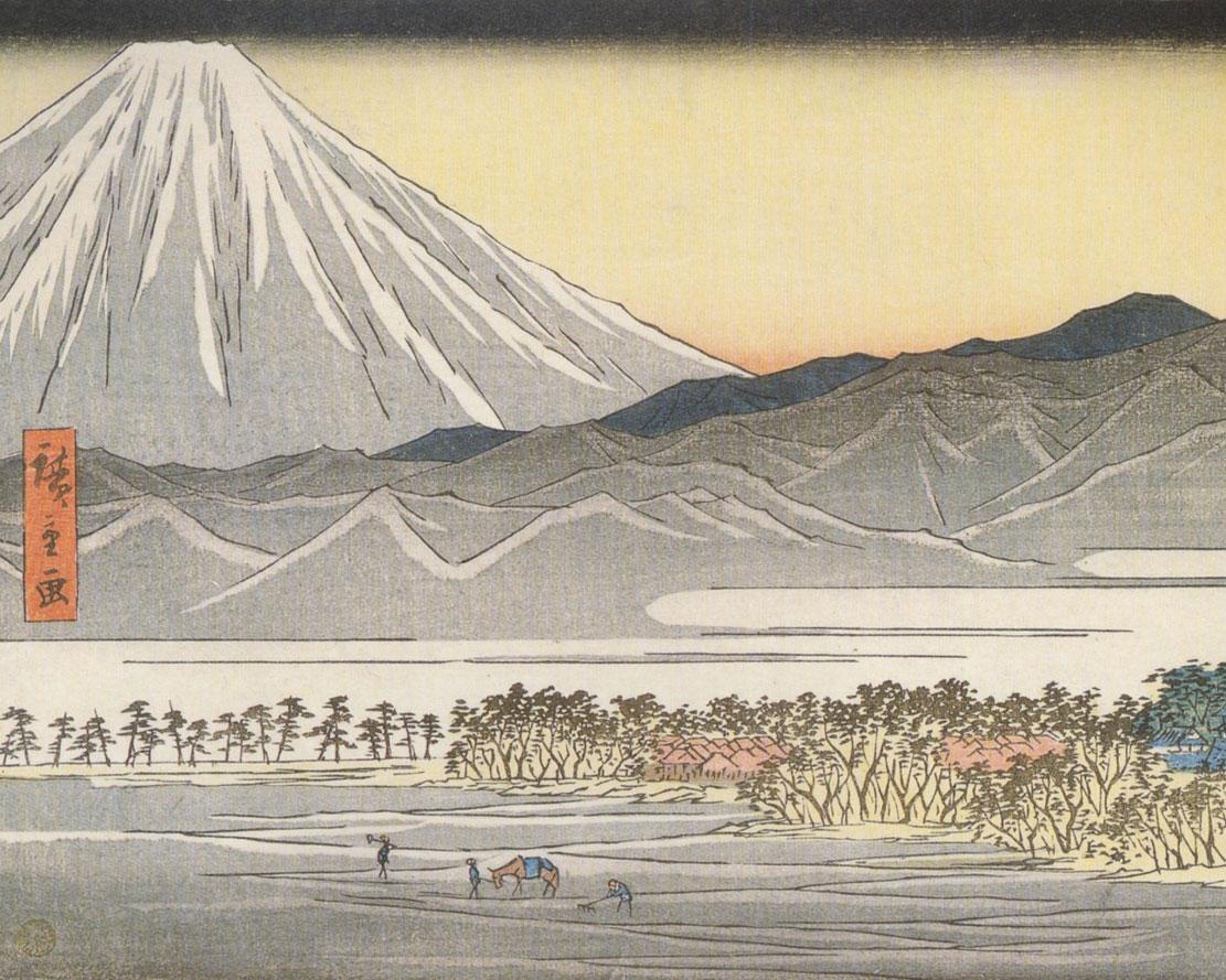 Fuji.playa