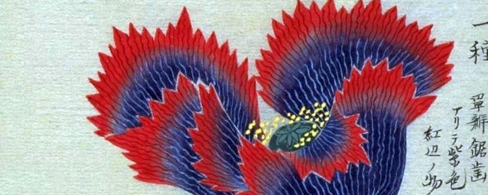 La contemplación del tiempo. Arte japonés
