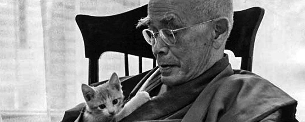 Una enseñanza budista