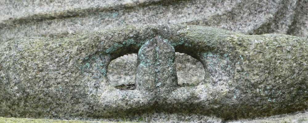 Espíritu y naturaleza en el Zen