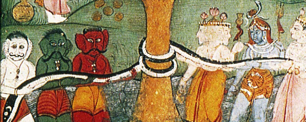 El 'soma', el néctar de la inmortalidad